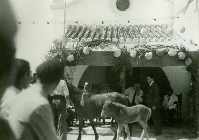 desfile de ganado la barca 1947